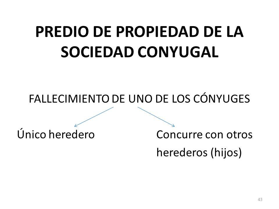 PREDIO DE PROPIEDAD DE LA SOCIEDAD CONYUGAL