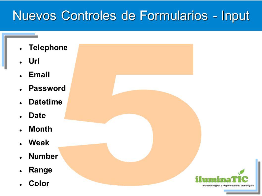 Nuevos Controles de Formularios - Input