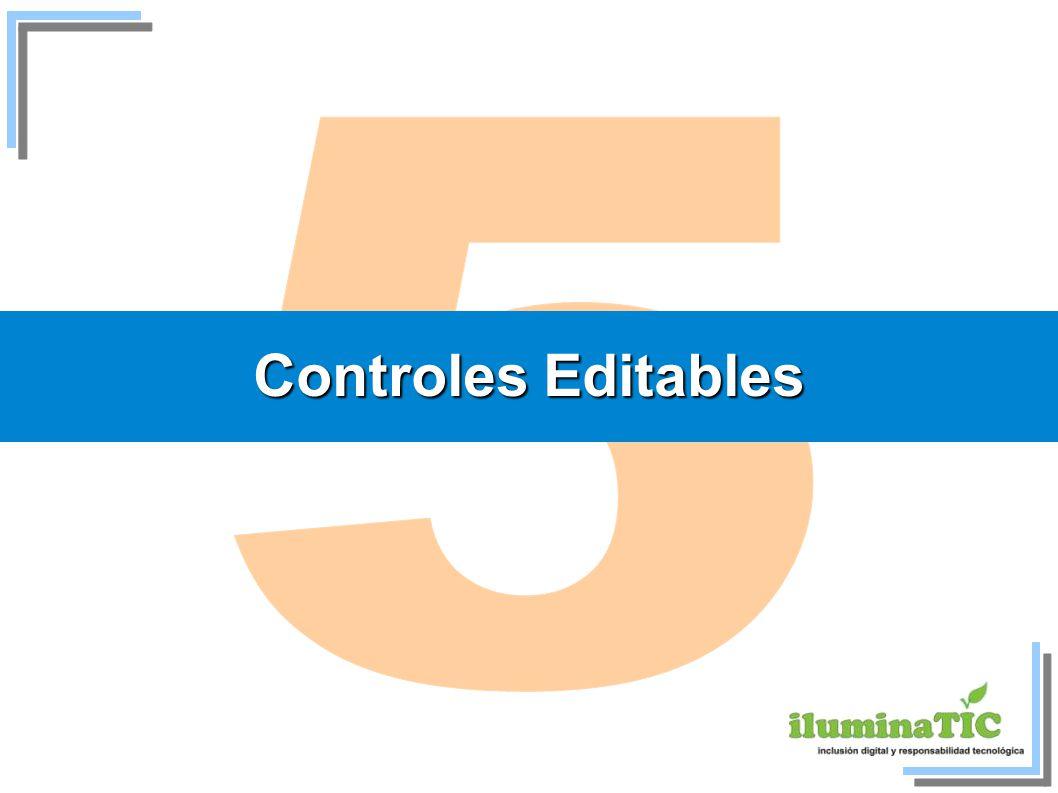 5 Controles Editables 19