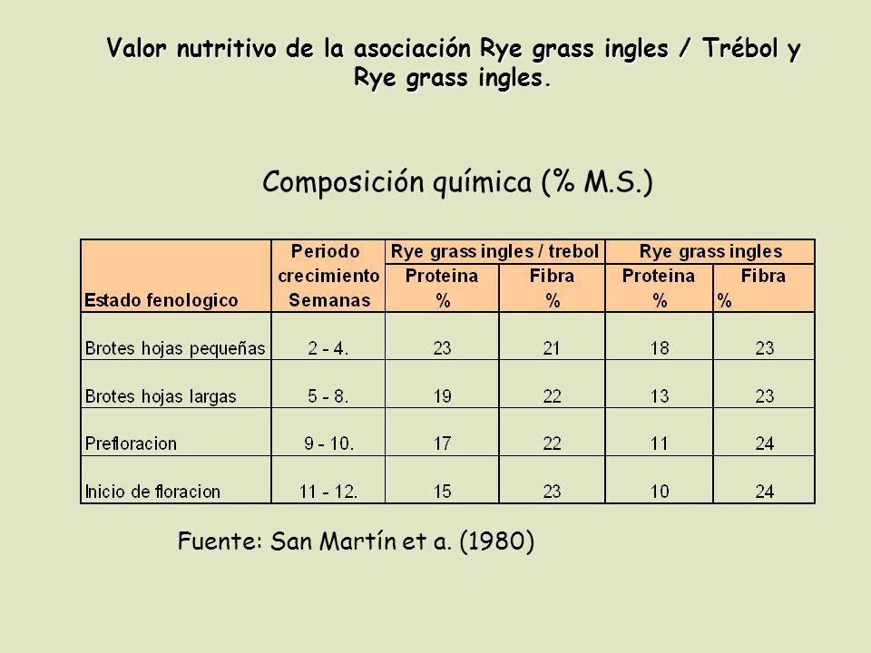 Composición química (% M.S.)