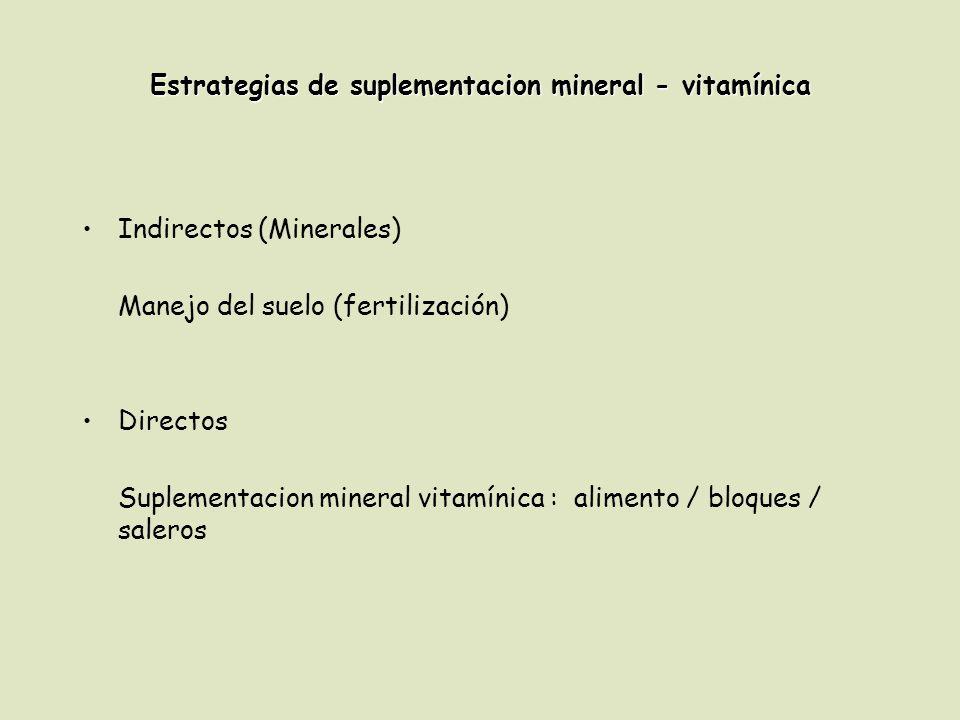 Estrategias de suplementacion mineral - vitamínica