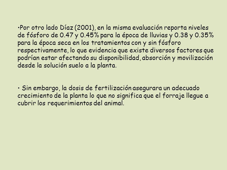 Por otro lado Díaz (2001), en la misma evaluación reporta niveles de fósforo de 0.47 y 0.45% para la época de lluvias y 0.38 y 0.35% para la época seca en los tratamientos con y sin fósforo respectivamente, lo que evidencia que existe diversos factores que podrían estar afectando su disponibilidad, absorción y movilización desde la solución suelo a la planta.