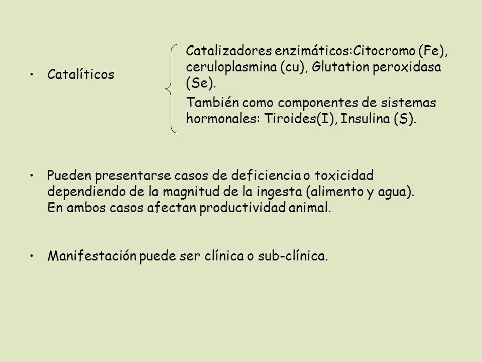 Catalizadores enzimáticos:Citocromo (Fe), ceruloplasmina (cu), Glutation peroxidasa (Se).