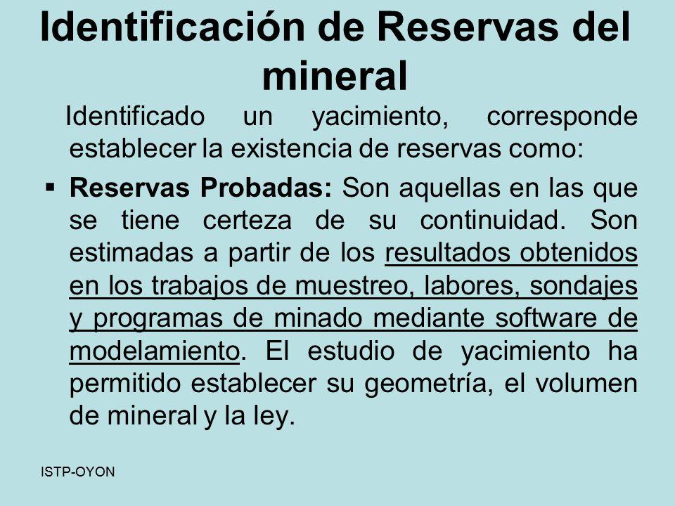 Identificación de Reservas del mineral