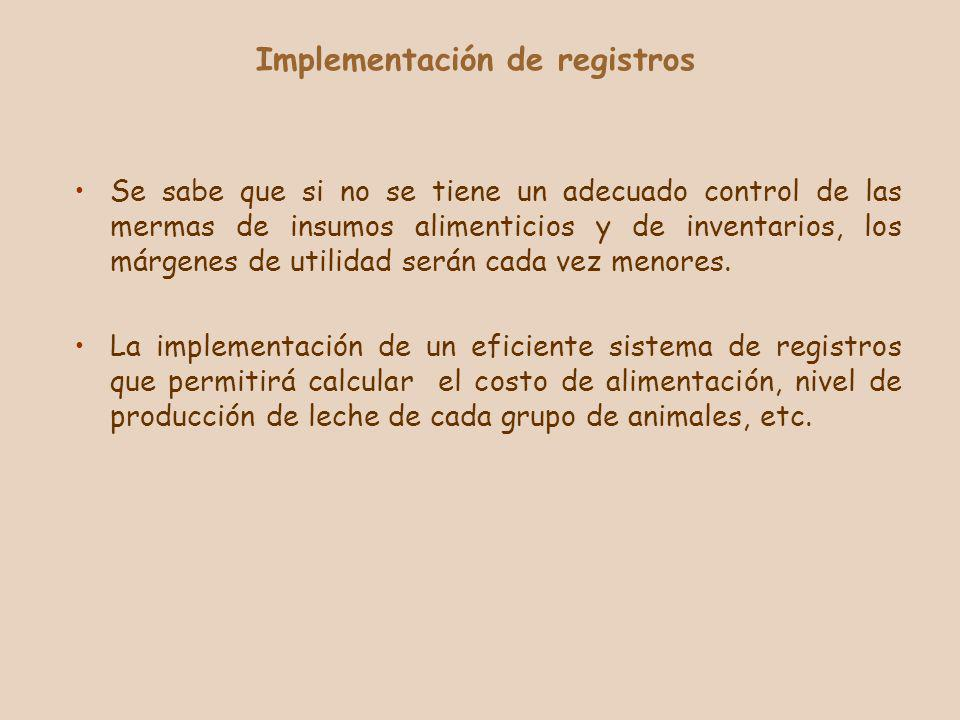 Implementación de registros