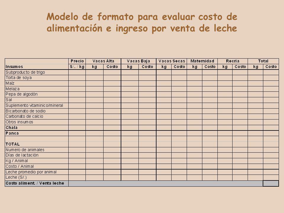 Modelo de formato para evaluar costo de alimentación e ingreso por venta de leche