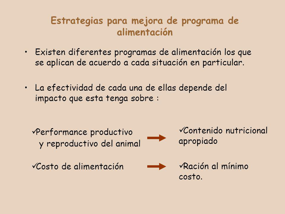 Estrategias para mejora de programa de alimentación