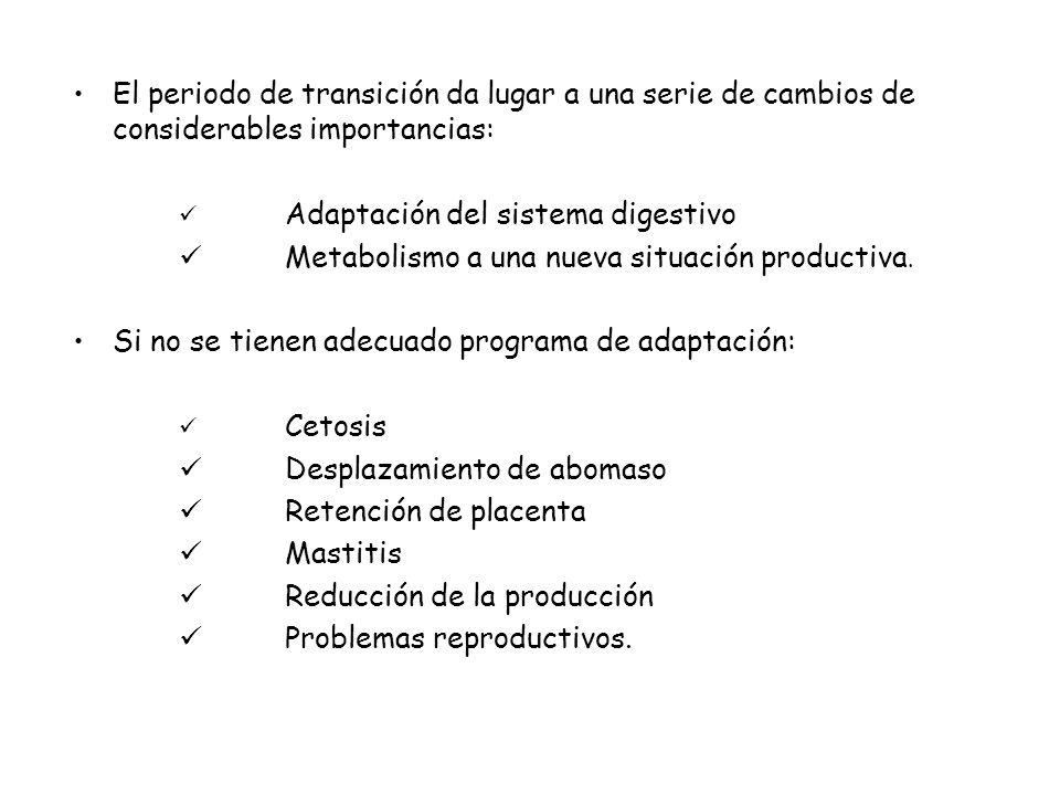 Metabolismo a una nueva situación productiva.