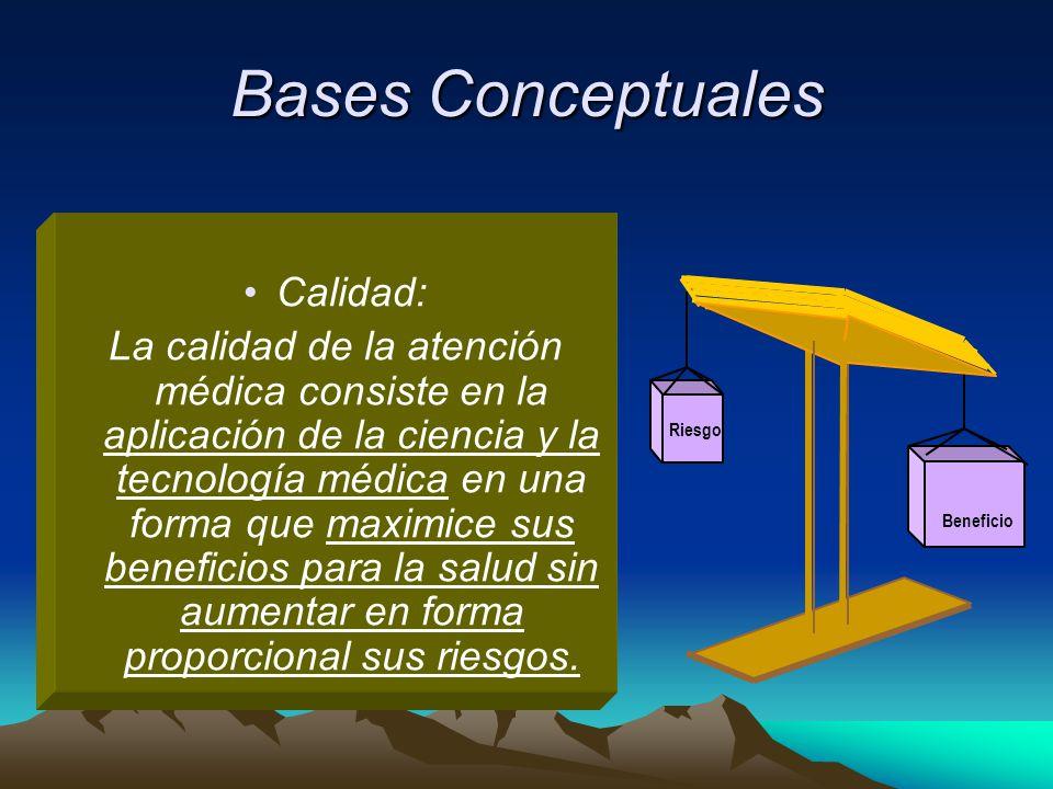 Bases Conceptuales Calidad: