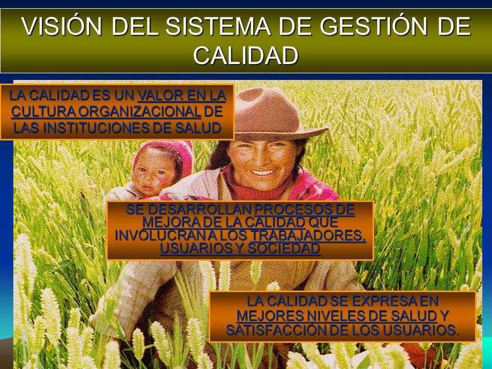 VISIÓN DEL SISTEMA DE GESTIÓN DE CALIDAD
