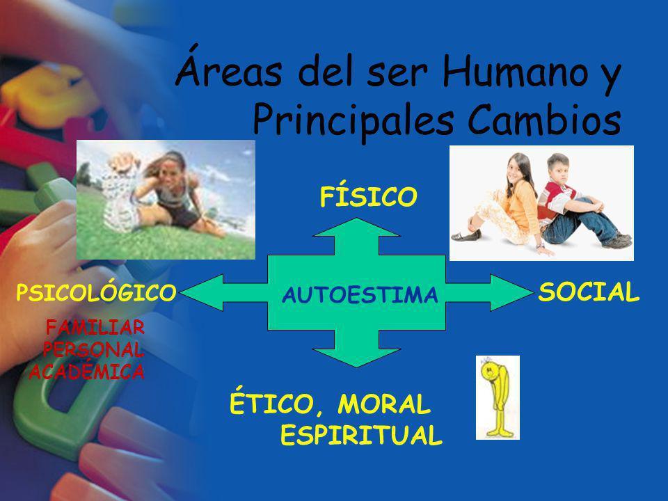 Áreas del ser Humano y Principales Cambios