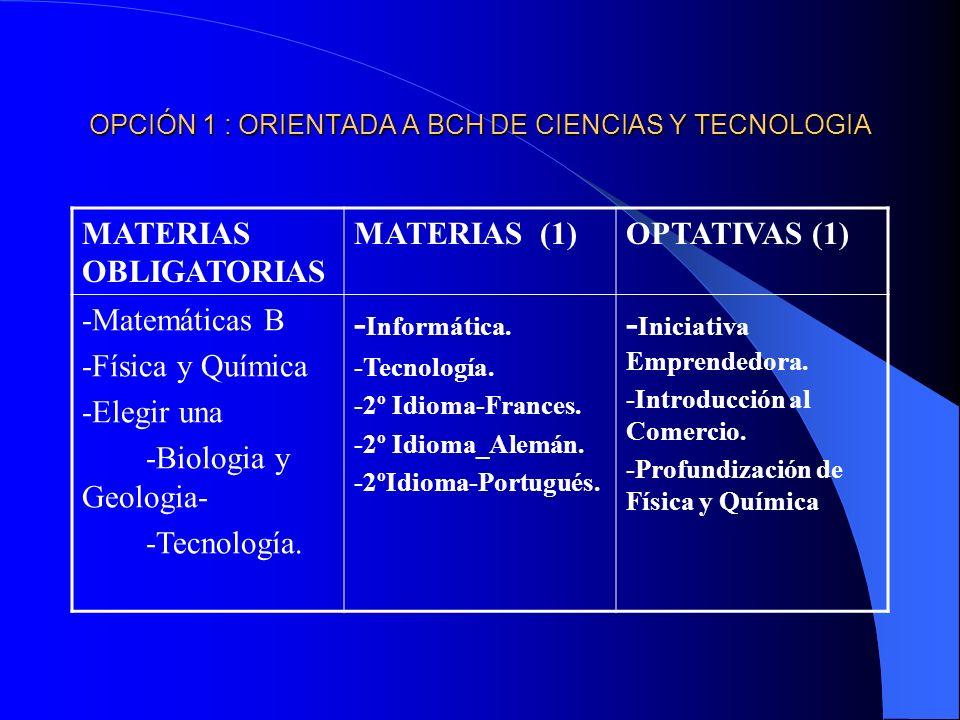OPCIÓN 1 : ORIENTADA A BCH DE CIENCIAS Y TECNOLOGIA