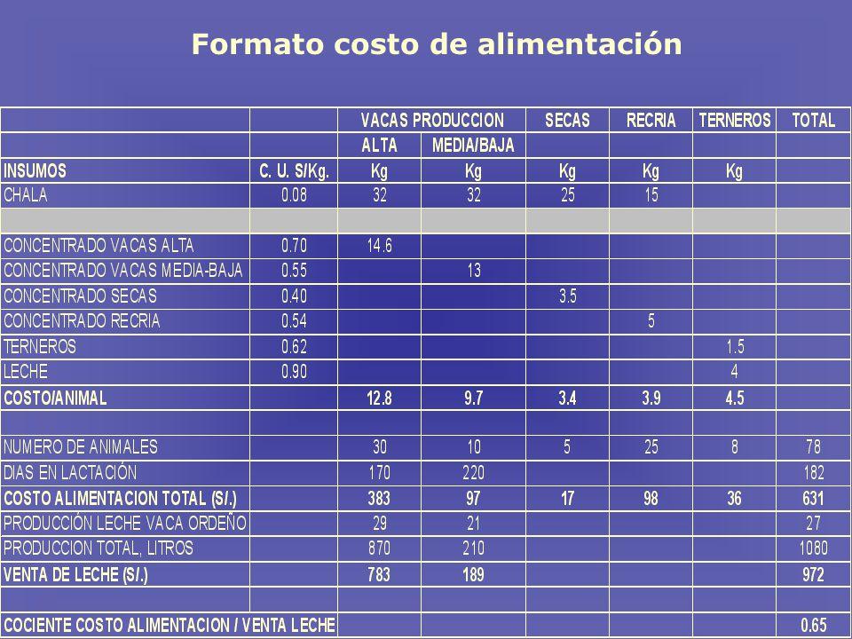 Formato costo de alimentación