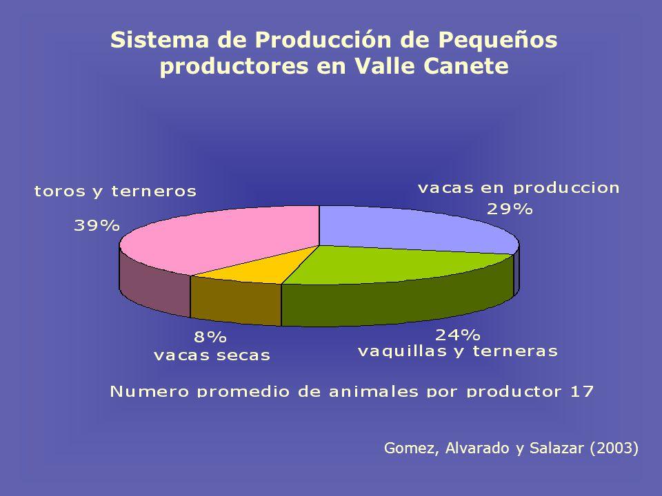 Sistema de Producción de Pequeños productores en Valle Canete