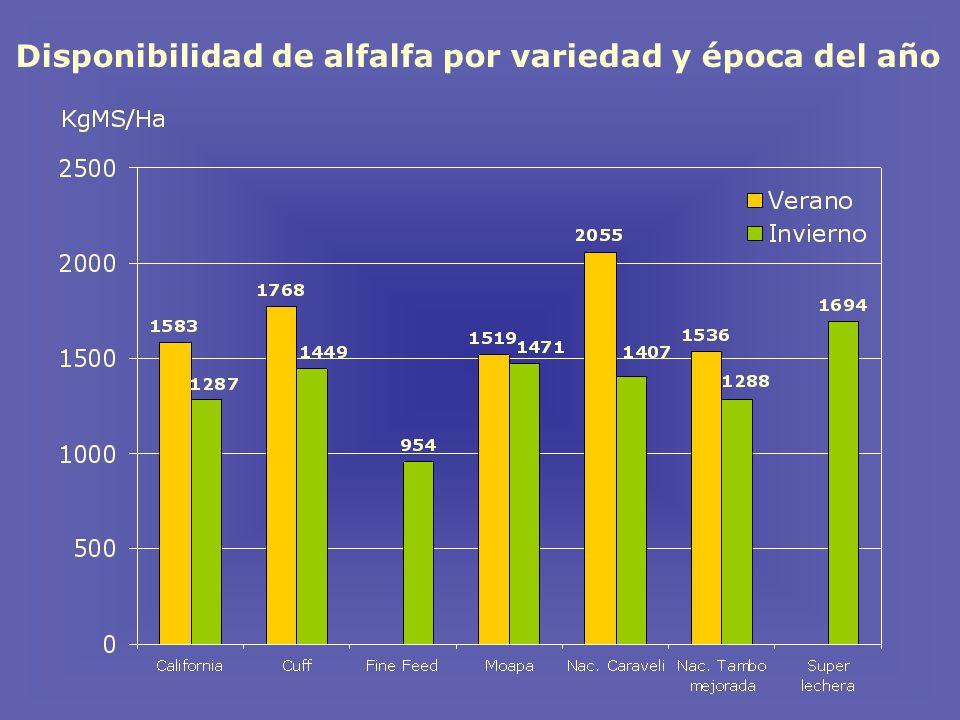 Disponibilidad de alfalfa por variedad y época del año