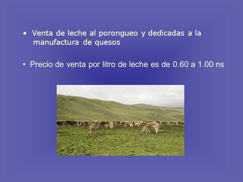 Precio de venta por litro de leche es de 0.60 a 1.00 ns