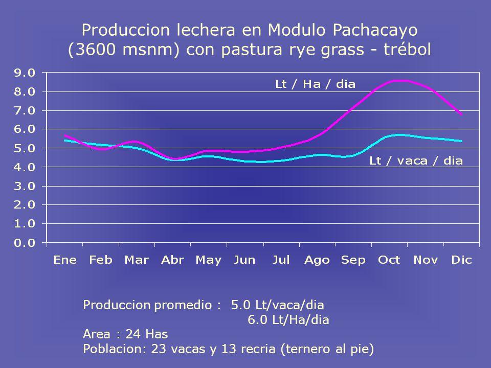 Produccion lechera en Modulo Pachacayo (3600 msnm) con pastura rye grass - trébol