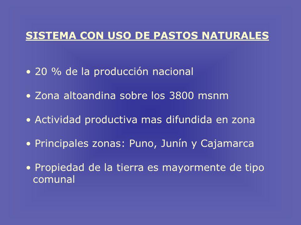 SISTEMA CON USO DE PASTOS NATURALES