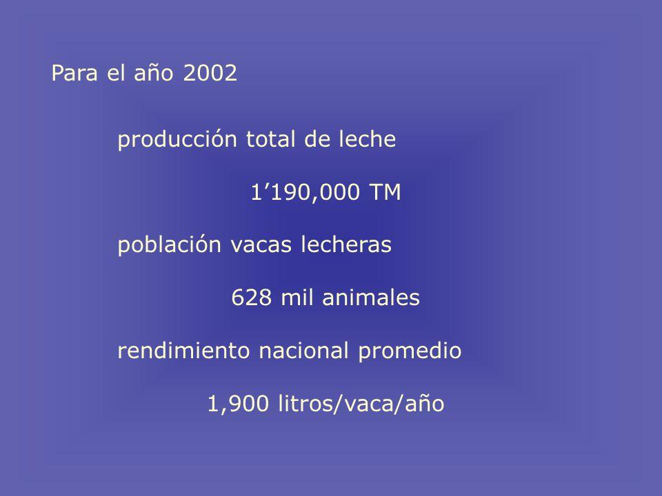 Para el año 2002 producción total de leche. 1'190,000 TM. población vacas lecheras. 628 mil animales.