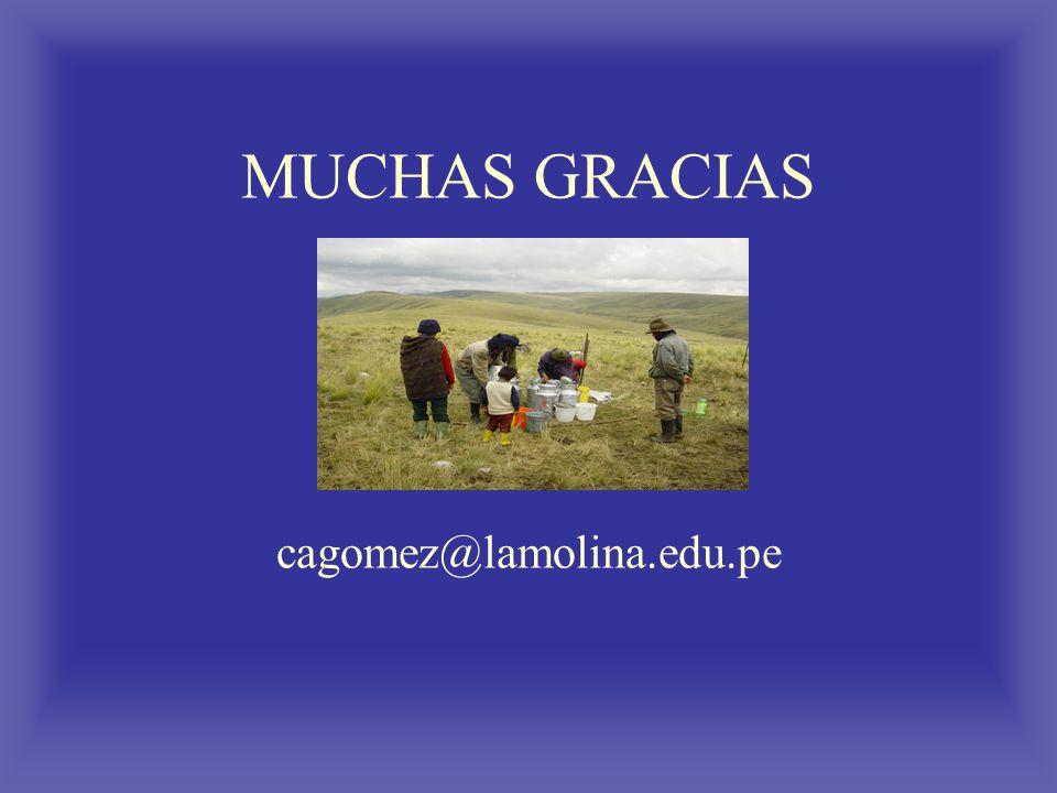 MUCHAS GRACIAS cagomez@lamolina.edu.pe
