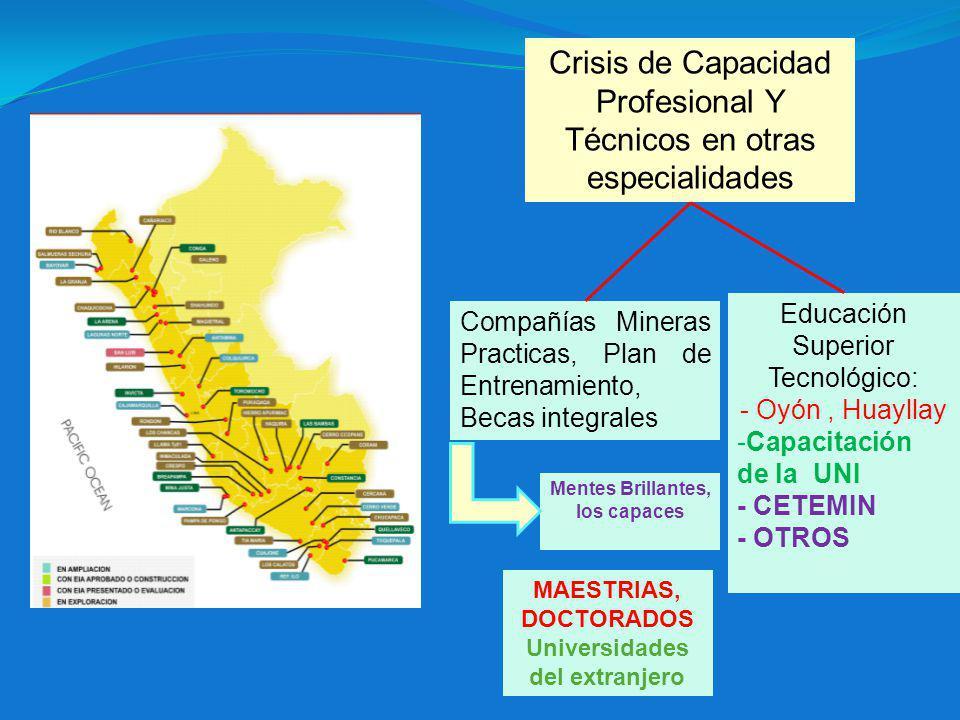 Crisis de Capacidad Profesional Y Técnicos en otras especialidades
