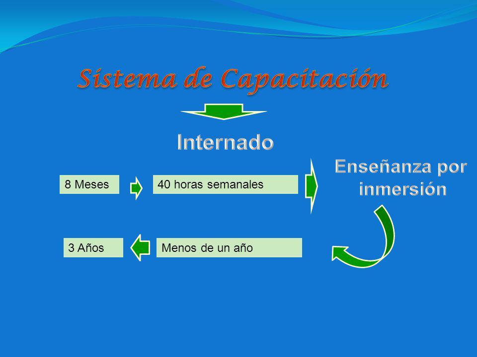 Sistema de Capacitación