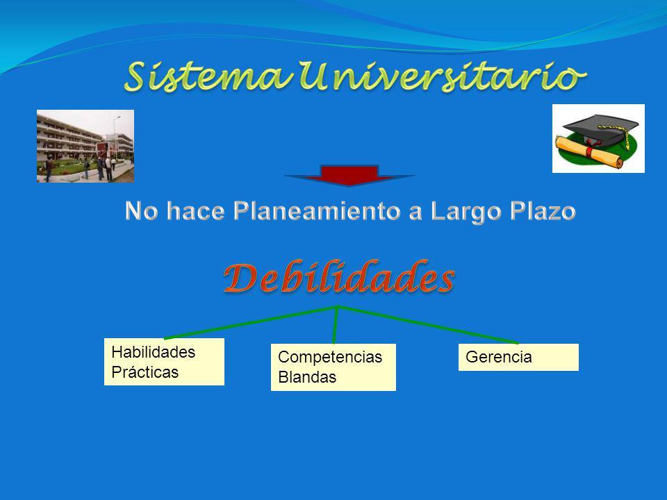 Sistema Universitario No hace Planeamiento a Largo Plazo