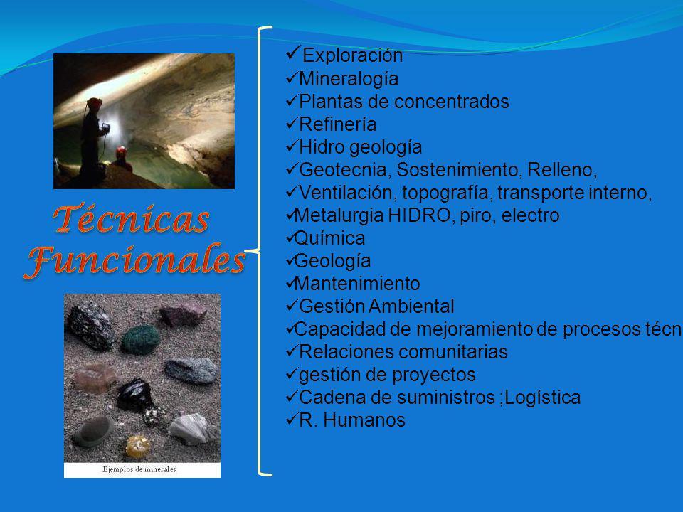 Técnicas Funcionales Exploración Mineralogía Plantas de concentrados