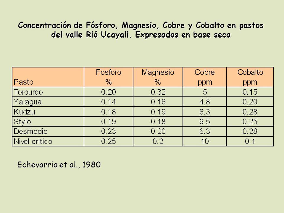 Concentración de Fósforo, Magnesio, Cobre y Cobalto en pastos del valle Rió Ucayali. Expresados en base seca