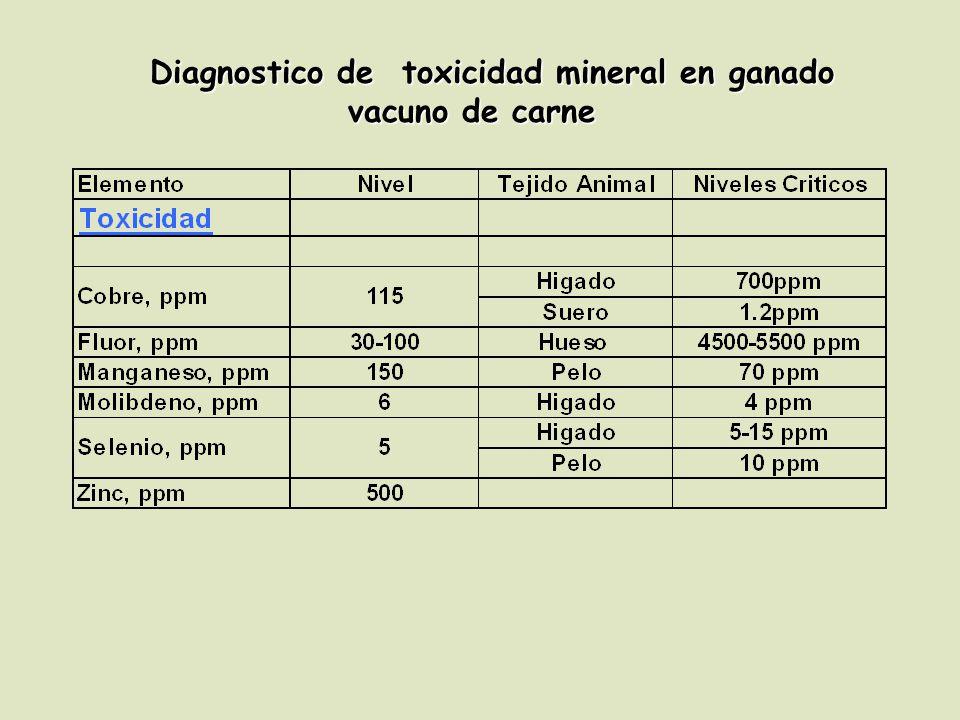 Diagnostico de toxicidad mineral en ganado vacuno de carne