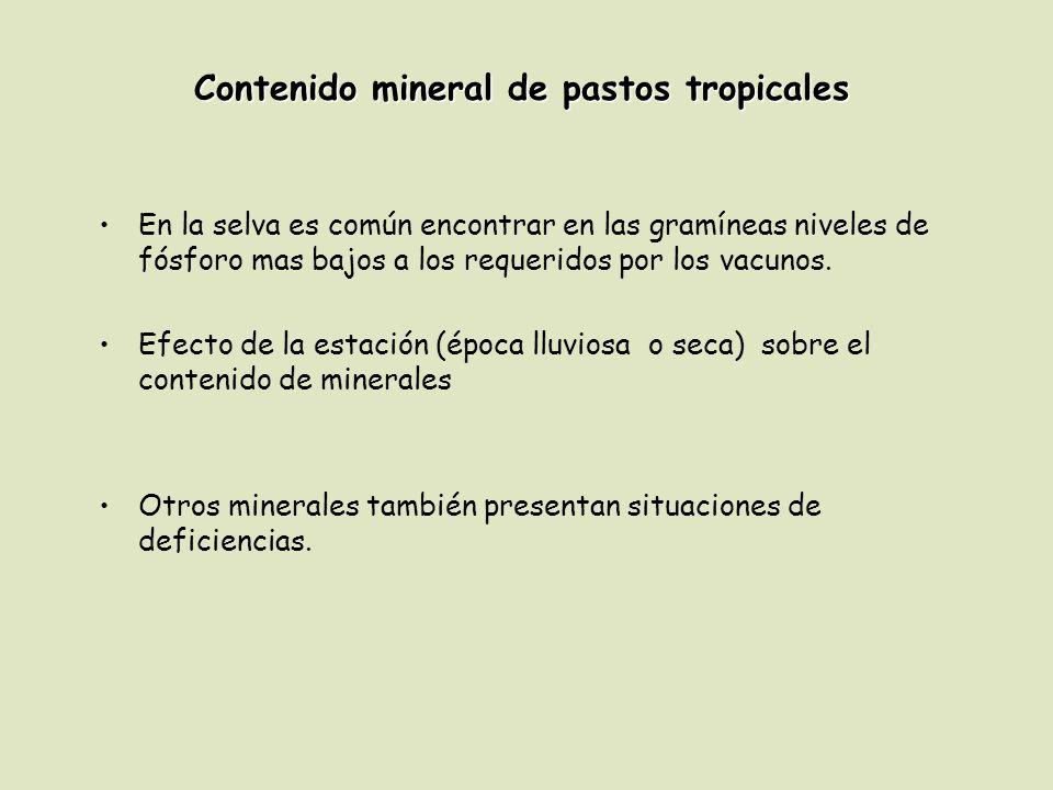 Contenido mineral de pastos tropicales
