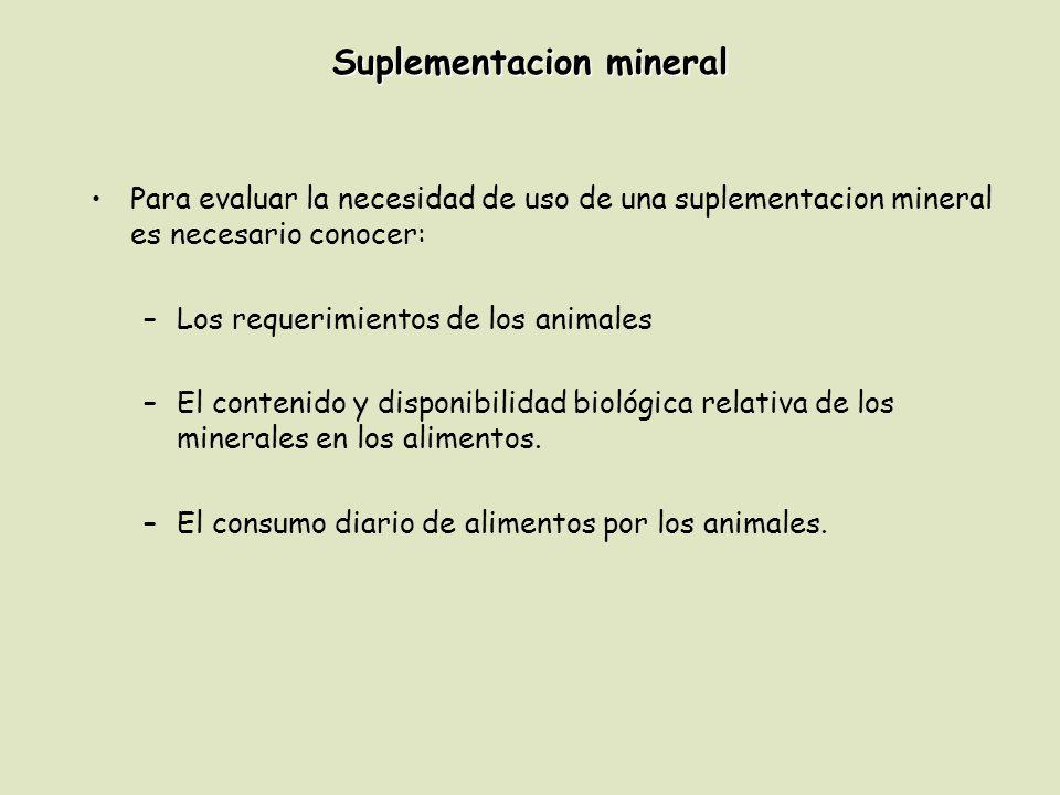 Suplementacion mineral