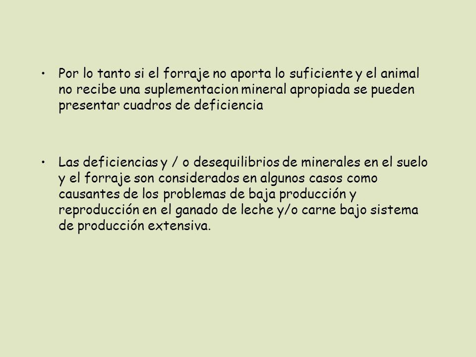Por lo tanto si el forraje no aporta lo suficiente y el animal no recibe una suplementacion mineral apropiada se pueden presentar cuadros de deficiencia