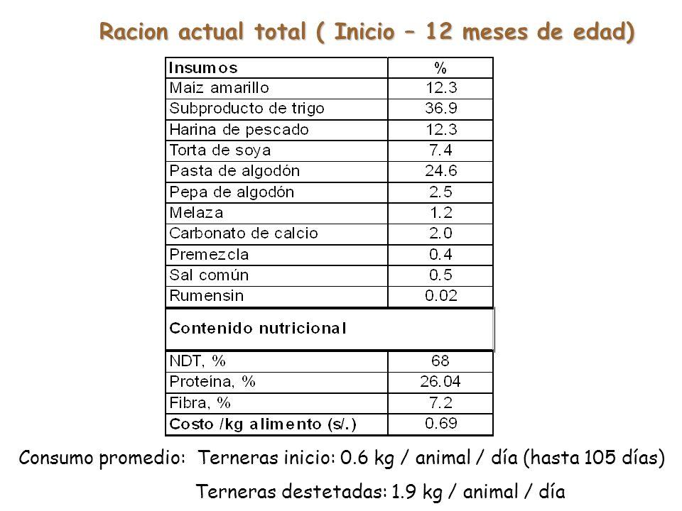 Racion actual total ( Inicio – 12 meses de edad)
