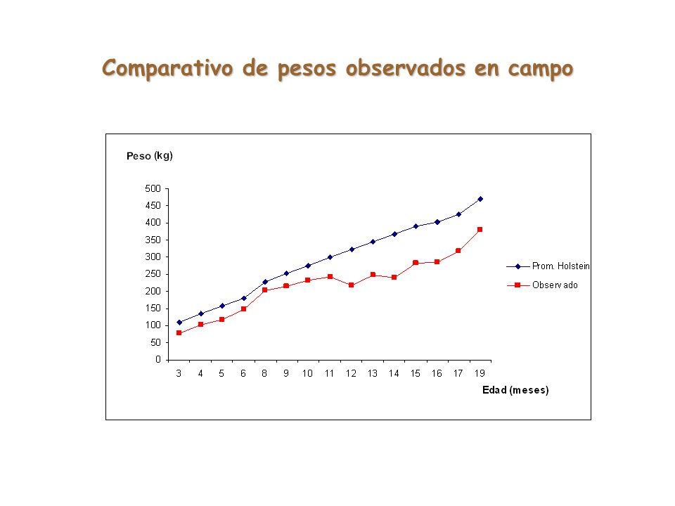Comparativo de pesos observados en campo