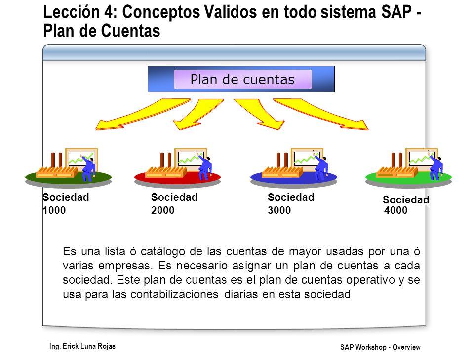 Lección 4: Conceptos Validos en todo sistema SAP - Plan de Cuentas