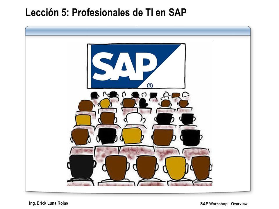 Lección 5: Profesionales de TI en SAP