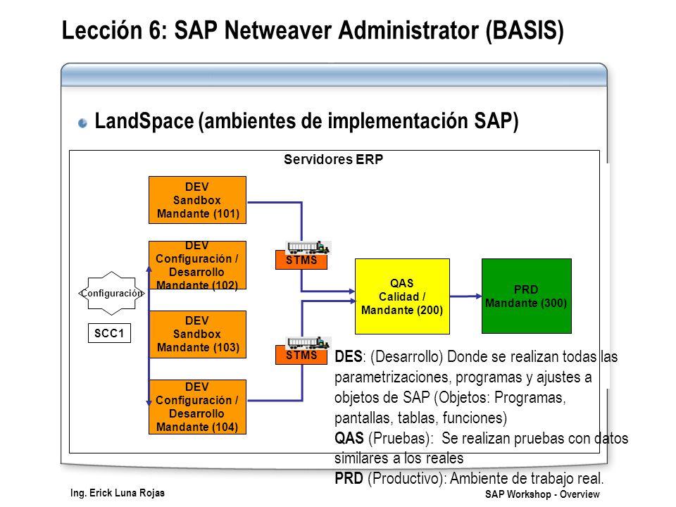 Lección 6: SAP Netweaver Administrator (BASIS)