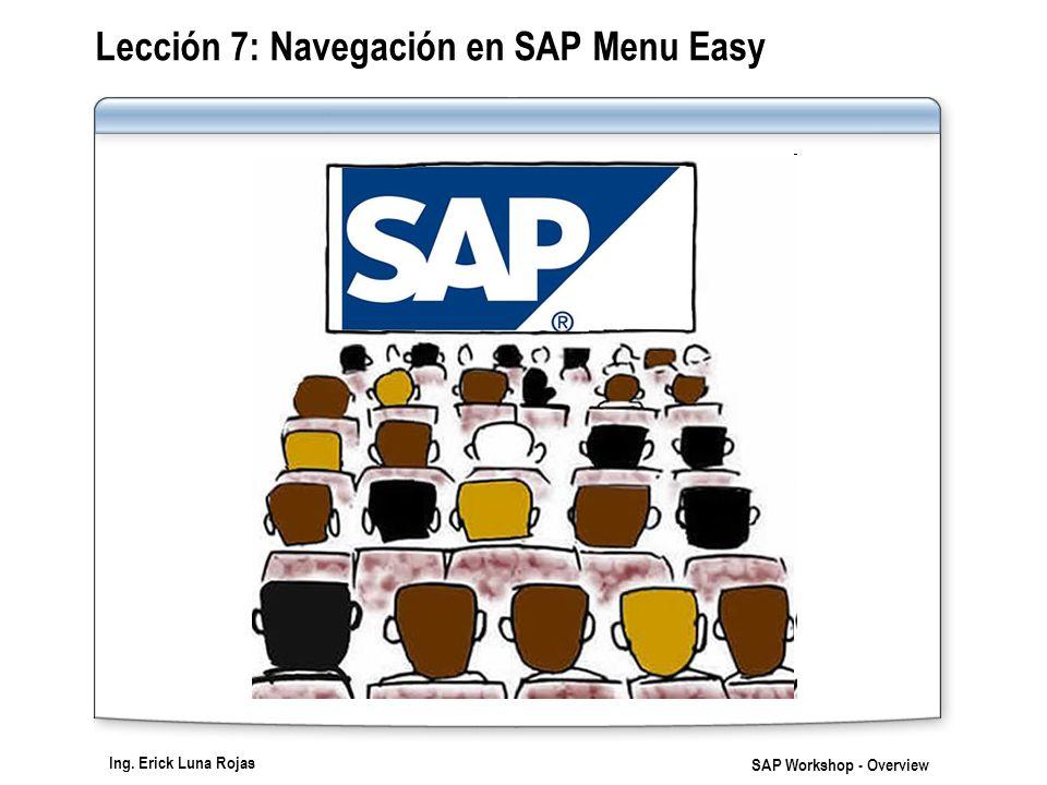 Lección 7: Navegación en SAP Menu Easy