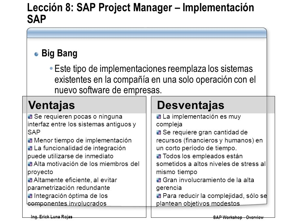 Lección 8: SAP Project Manager – Implementación SAP
