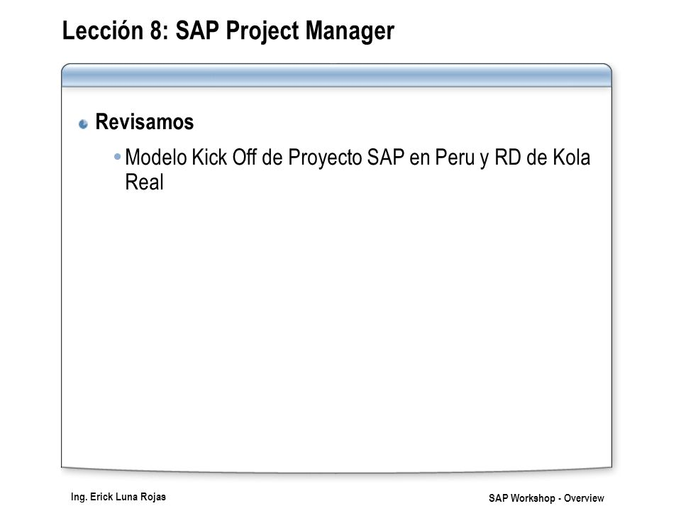 Lección 8: SAP Project Manager