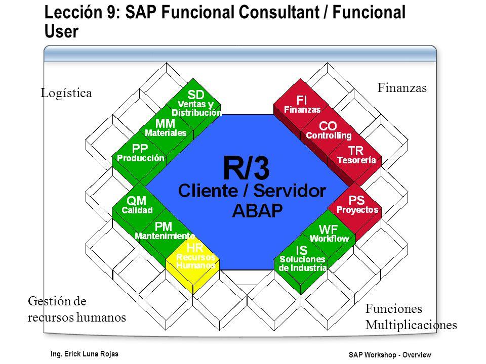 Lección 9: SAP Funcional Consultant / Funcional User