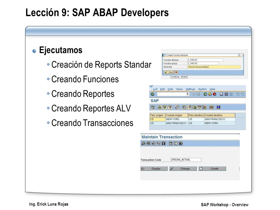 Lección 9: SAP ABAP Developers