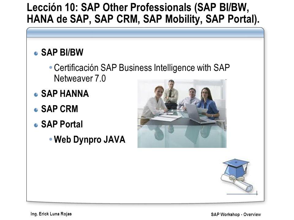 Lección 10: SAP Other Professionals (SAP BI/BW, HANA de SAP, SAP CRM, SAP Mobility, SAP Portal).