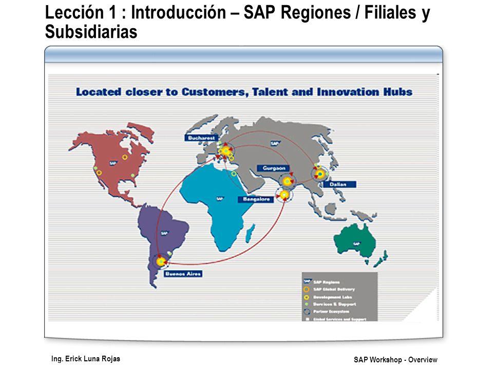 Lección 1 : Introducción – SAP Regiones / Filiales y Subsidiarias