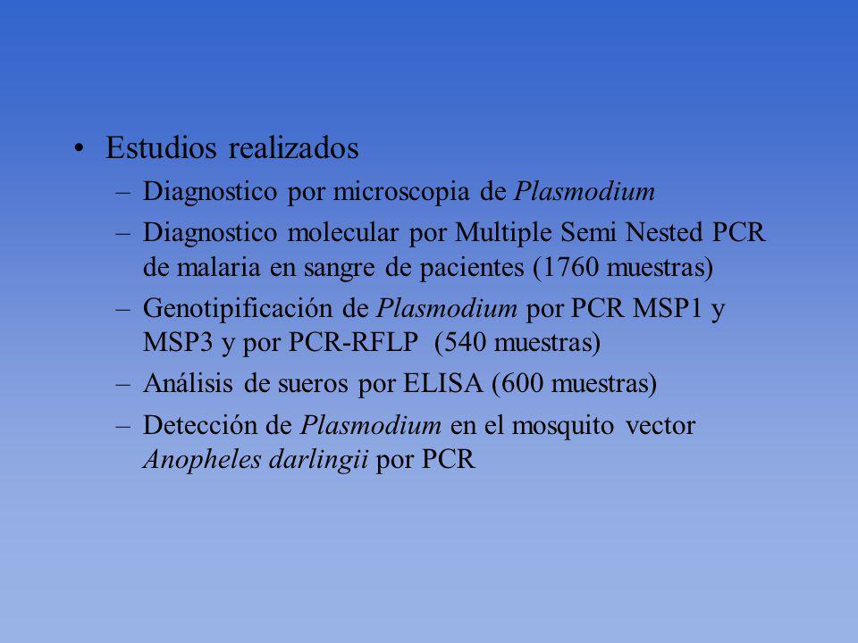 Estudios realizados Diagnostico por microscopia de Plasmodium
