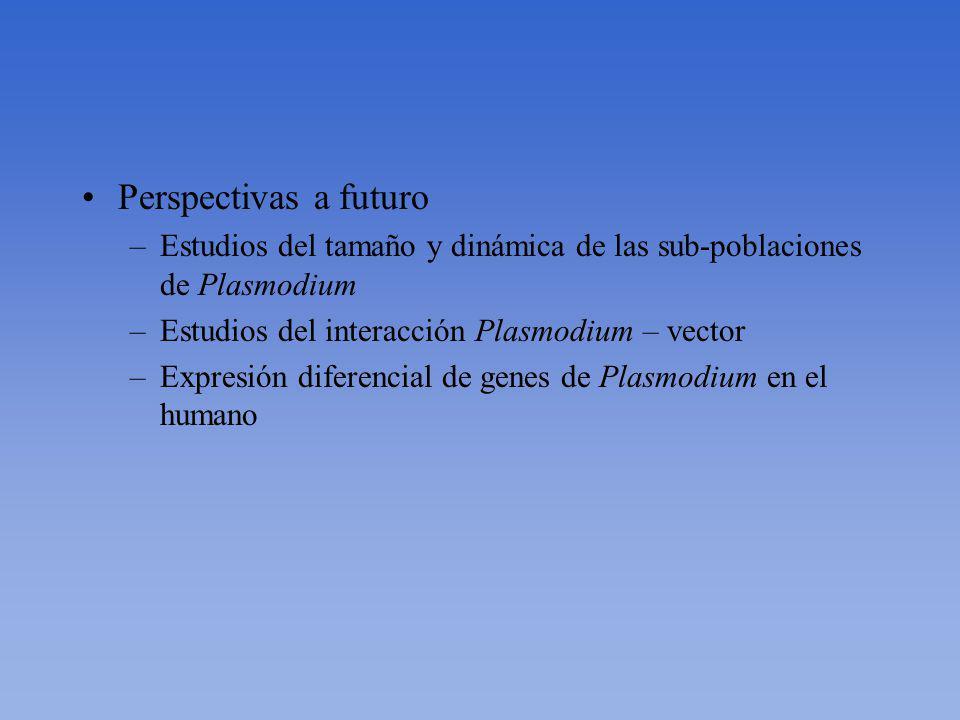 Perspectivas a futuro Estudios del tamaño y dinámica de las sub-poblaciones de Plasmodium. Estudios del interacción Plasmodium – vector.