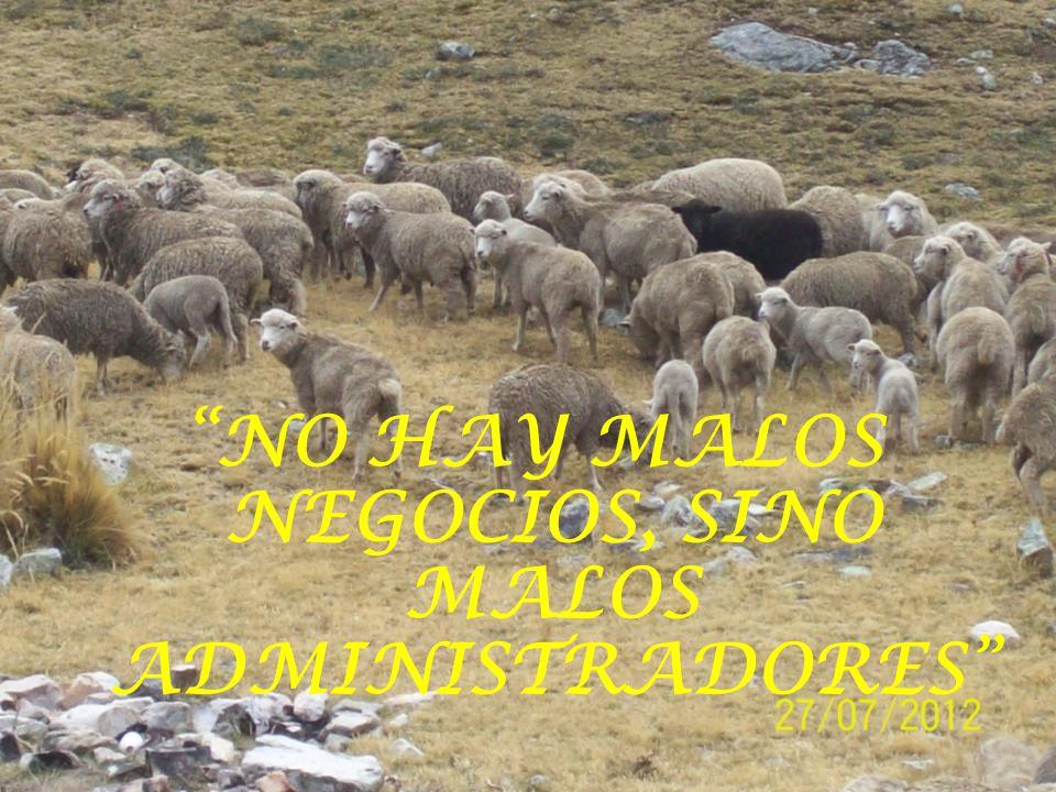 NO HAY MALOS NEGOCIOS, SINO MALOS ADMINISTRADORES