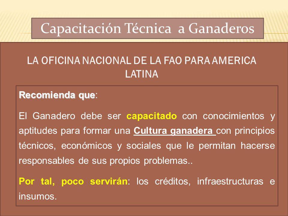 LA OFICINA NACIONAL DE LA FAO PARA AMERICA LATINA