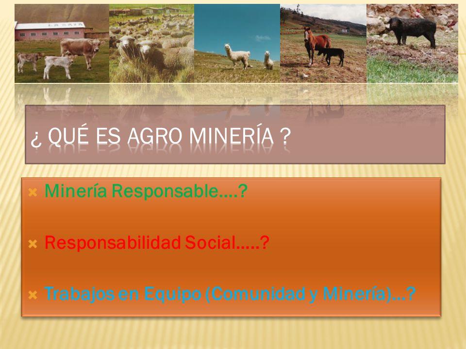 ¿ Qué es Agro Minería Minería Responsable….